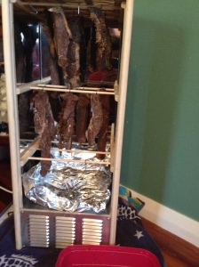 Biltong Maker for affordable meat drying at home